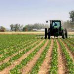 Les panneaux photovoltaiques dans lilieu agricole