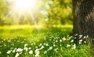 électricité photovoltaïque grâce au soleil